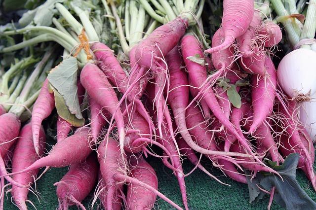 růžová mrkev